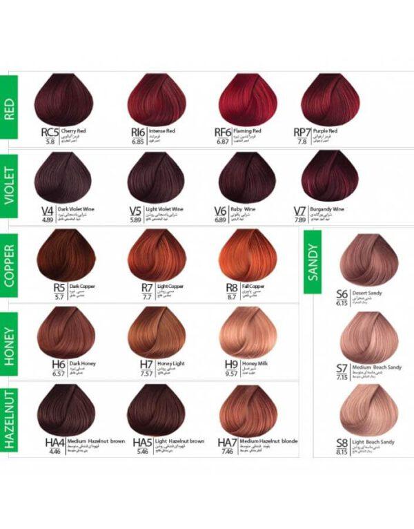 طیف رنگی رنگ مو بنسای در کاتالوگ