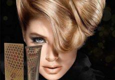 procsa haircolor